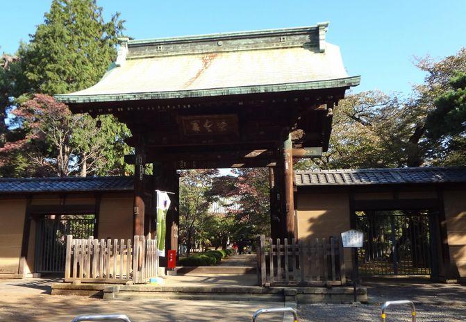 東京にある金運にご利益のある神社【豪徳寺】