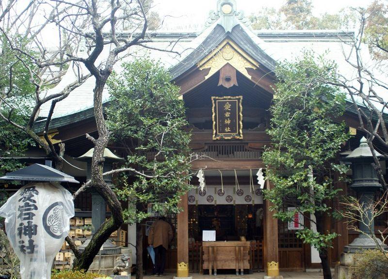 東京にある出世にご利益がある神社【愛宕神社】